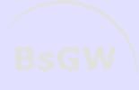 bsgw client VYZYR